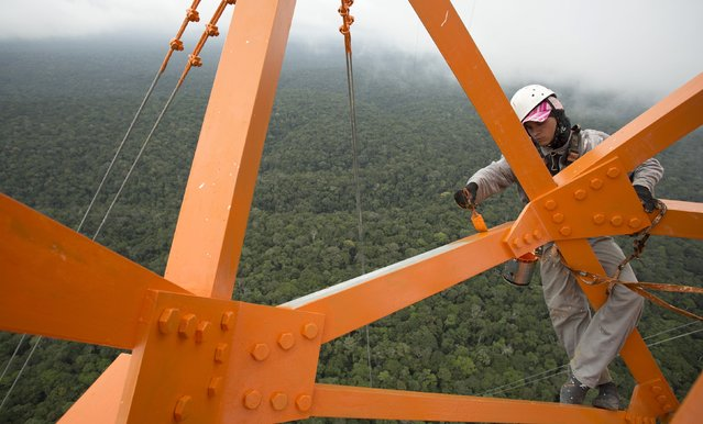 A worker paints the Amazon Tall Tower Observatory (ATTO) in Sao Sebastiao do Uatuma in the middle of the Amazon forest in Amazonas state January 10, 2015. (Photo by Bruno Kelly/Reuters)