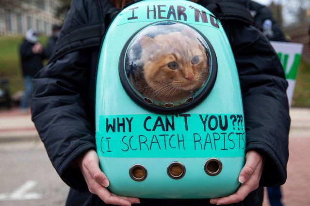 Goose, a nine-month-old cat, sits in a backpack as people gather during a Speak Out Against Sexual Violence demonstration at Eastern Michigan University in Ypsilanti, Michigan, U.S., March 28, 2021. (Photo by Emily Elconin/Reuters)