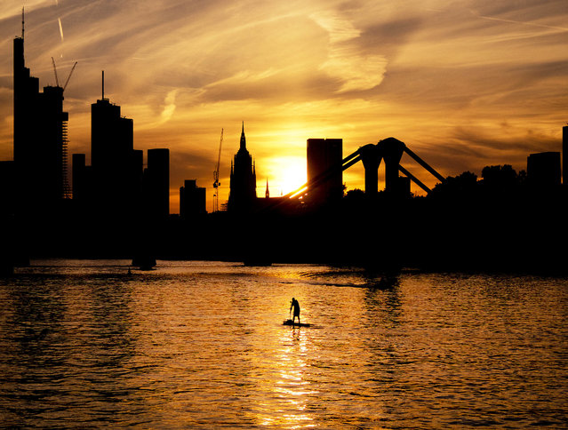 A stand up paddler explores the river Rhine as the sun sets over the buildings of the banking district in Frankfurt, Germany, Tuesday, July 31, 2018. (Photo by Michael Probst/AP Photo)