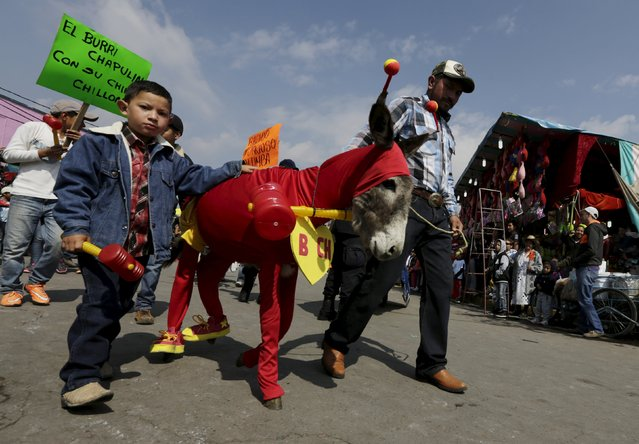 """Residents walk beside a donkey dressed as """"El Chapulin Colorado"""", a character by late Mexican screenwriter Roberto Gomez Bolanos , during the annual donkey festival in Otumba, near Mexico City, May 1, 2015. (Photo by Henry Romero/Reuters)"""