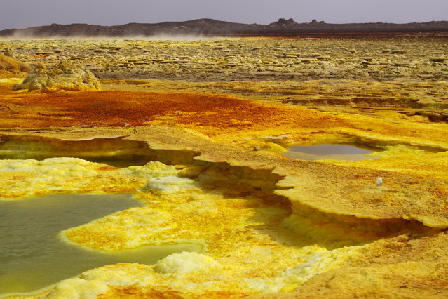 Concretions colored by sulfur Volcano Dallol, Ethiopia on March 27, 2009. (Photo by Jean-Luc & FranÁoise Ziegler/Biosphot)