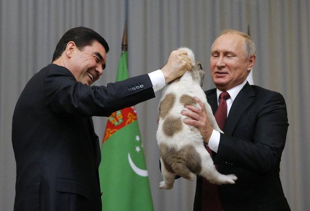 Turkmenistan's President Gurbanguly Berdimuhamedov (L) presents a Turkmen shepherd dog, locally known as Alabai, to his Russian counterpart Vladimir Putin during a meeting in Sochi, Russia October 11, 2017. (Photo by Maxim Shemetov/Reuters)