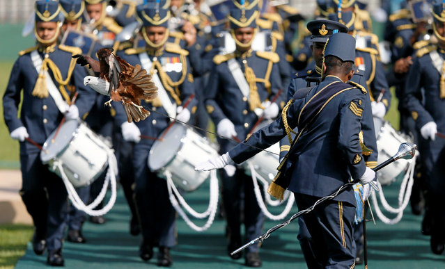 An eagle, the symbol of Sri Lanka's Air Force flies away as a soldier attempts to control it during a welcome ceremony for Malaysia's Prime Minister Najib Razak (not pictured) in Colombo, Sri Lanka December 18, 2017. (Photo by Dinuka Liyanawatte/Reuters)