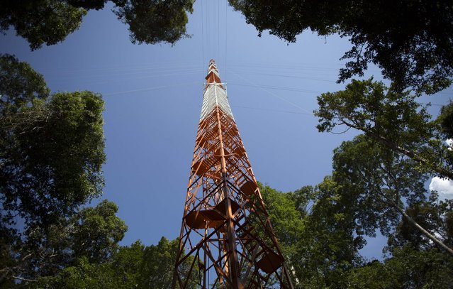 The Amazon Tall Tower Observatory (ATTO) is pictured in Sao Sebastiao do Uatuma in the middle of the Amazon forest in Amazonas state January 8, 2015. (Photo by Bruno Kelly/Reuters)
