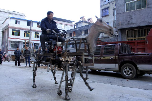 Su Daocheng rides his home-made mechanical horse vehicle on a street in Shiyan, Hubei province January 18, 2015. Su spent 2 months making this 1.5 metre high and 2 metre long horse, which weighed 250 kilograms with 4 legs and 2 supportive wheels, local media reported. (Photo by Reuters/Stringer)