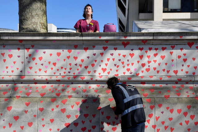 A health worker from St Thomas' hospital stands behind a wall being painted in hearts as a memorial to all those who have died so far in the UK from COVID-19, amid the spread of the coronavirus disease pandemic in London, Britain, March 29, 2021. (Photo by Toby Melville/Reuters)