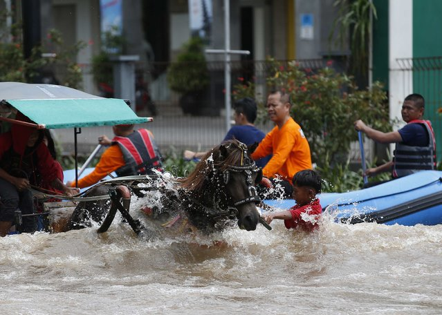 A boy guiding a horse and buggy is swamped by waves caused by a truck driving on a flooded street (unseen), after continuous heavy seasonal rains have flooded parts of Jakarta February 10, 2015. (Photo by Darren Whiteside/Reuters)