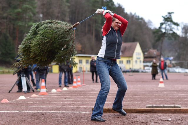 A woman hurls a fir tree during the tenth Christmas-tree-throwing triathlon world championships in Weidenthal, Germany, Sunday, January 10, 2016. The trees are hurled, thrown into the distance and and tossed into the air during the competition. (Photo by Uwe Anspach/EPA)
