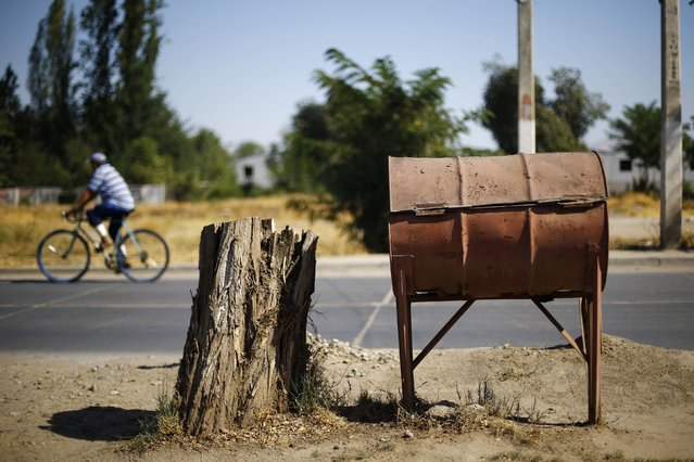 A discarded oil barrel is used as a rubbish container in a rural area near Santiago, February 16, 2015. (Photo by Ivan Alvarado/Reuters)