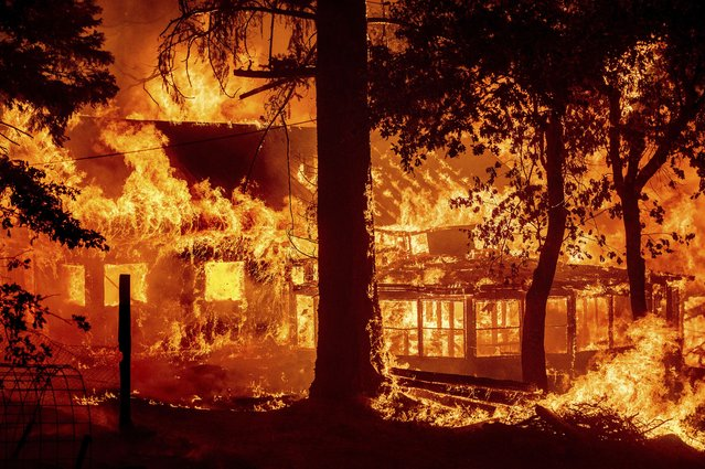 Flames from the Dixie Fire consume a home in the Indian Falls community of Plumas County, Calif., Saturday, July 24, 2021. The fire destroyed multiple residences as it tore through the area. (Photo by Noah Berger/AP Photo)
