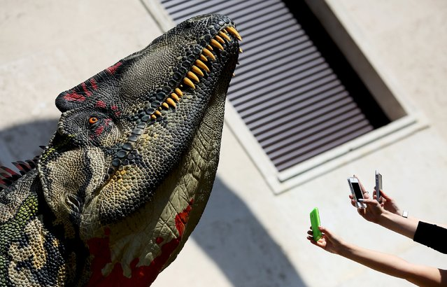 "People take pictures with their mobile phone of a scale model of a dinosaur displayed in front of La Sapienza University headquarters in Rome April 10, 2015. The realistic reproductions of dinosaurs are part of the ""Dinosaurs in the flesh, science and art bring to life the rulers of a lost world"" exhibition. (Photo by Alessandro Bianchi/Reuters)"