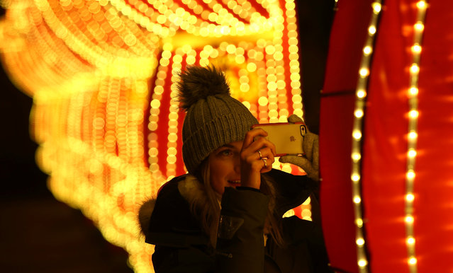 A woman photographs a light display during the The Magical Lantern Festival marking the Chinese new year at Chiswick House in London, Britain January 18, 2017. (Photo by Neil Hall/Reuters)