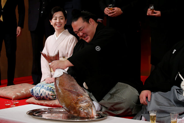 Japanese sumo wrestler Kisenosato (C) holds a red sea bream next to his stablemaster Tagonoura's wife Kotomi as he celebtares after receiving messengers from the Japan Sumo Association bringing official notice of his promotion to Yokozuna, or grand champion, during a ceremony in Tokyo, Japan, January 25, 2017. (Photo by Toru Hanai/Reuters)