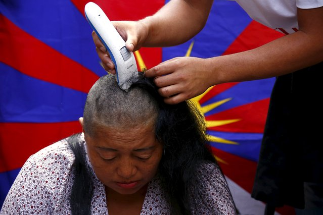 A Tibetan protester has her head shaved during a rally to mark what organisers said was the 57th anniversary of Tibetan National Uprising Day in central Sydney, Australia, March 10, 2016. (Photo by David Gray/Reuters)