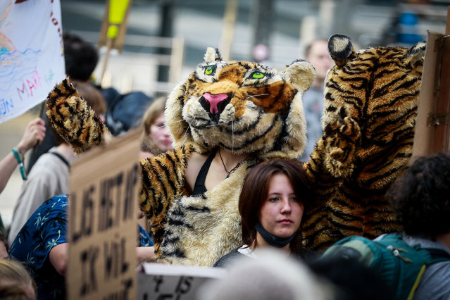 Thousands of people gather to call for urgent measures to combat climate change during a demonstration, in Brussels, Belgium, 10 October 2021. (Photo by Stephanie Lecocq/EPA/EFE)