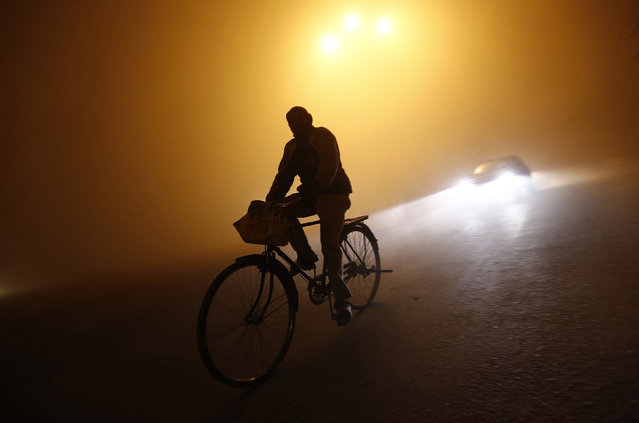 A man rides a bicycle through a road amid dense fog on a cold winter night in New Delhi January 5, 2014. (Photo by Adnan Abidi/Reuters)