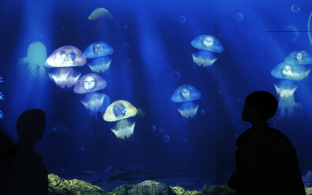 Visitors look at their portraits attached onto a projection of jellyfish images at the Hong Kong Ocean Park March 25, 2014. (Photo by Bobby Yip/Reuters)