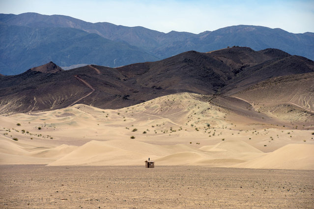 The Dumont Dunes are pictured in the Mojave desert in California on April 8, 2019. (Photo by Agustin Paullier/AFP Photo)