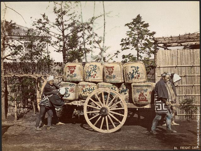 Freight Cart