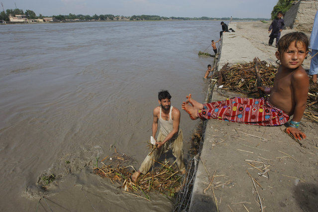 A man collects wood and straws to use as fuel for cooking from the flooded Kabul river near Peshawar, Pakistan, Wednesday, July 22, 2015. (Photo by Mohammad Sajjad/AP Photo)