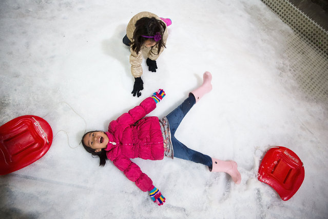 A Thai girl makes a snow angel at Snow Town Bangkok on July 28, 2015 in Bangkok, Thailand. Over the last year, two new indoor cold weather venues, Snow Town and Harbin Ice Wonderland, have opened in Bangkok offering many Thais their first opportunity to visit a frozen, wintry landscape. (Photo by Taylor Weidman/Getty Images)