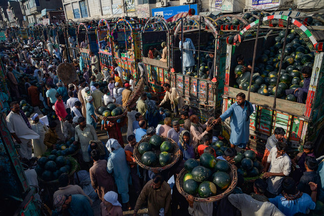 A large number of Pakistani traders are present at Badami Bagh Fruit Market on May 28, 2020 busy in unloading of their trucks from water-melon after the government relaxed a weeks-long lockdown that was enforced to help curb the spread of the coronavirus in Lahore, as local traders are coming from outskirts areas to buy water-melon while they are transporting to their areas for selling. Pakistan is generally self sufficient in the production of water melons. With the arrival of summer the natural gifts from the nature also come to the aid of people struggling with the scorching heat and harsh sunshine, one of the useful fruits of the summer is the water melon in provincial capital. (Photo by Rana Sajid Hussain/Pacific Press/Rex Features/Shutterstock)