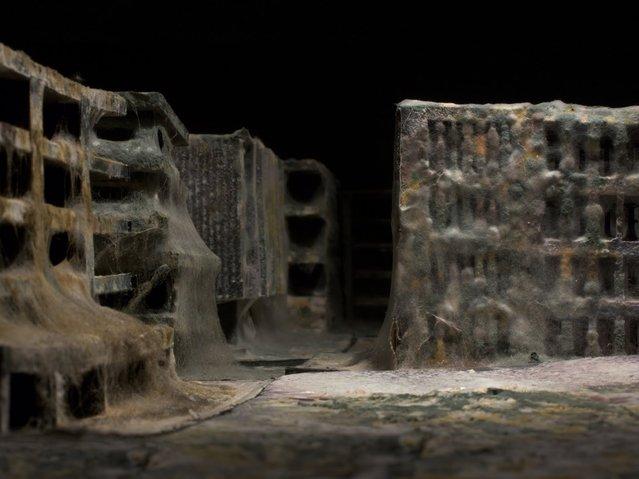 Apocalyptic Metropolises by Daniel Del Nero