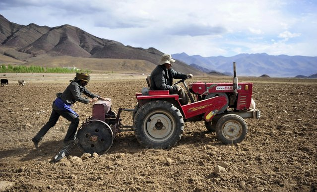 Farmers use a tractor to plough a field in Linzhou county of Lhasa, Tibet Autonomous Region, in this May 11, 2011 file photo. The world's largest makers of tractors and combines are finding a rare opportunity for growth in China despite a sharp slowdown in the world's No. 2 economy, with big farm machines in demand as the rural labour force shrinks and plot sizes grow. (Photo by Rooney Chen/Reuters)