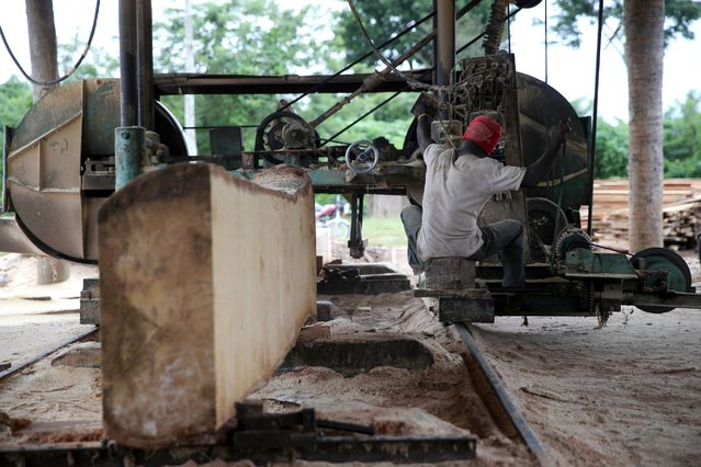 A labourer uses a milling machine at a sawmill near an unreserved forest in Igede-Ekiti township, southwest Nigeria, August 18, 2014. (Photo by Akintunde Akinleye/Reuters)