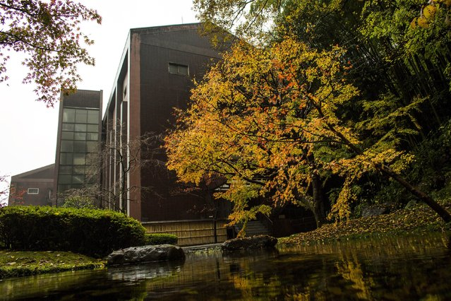 Suntory Holdings' Yamazaki Distillery is pictured through foliage in autumn colours in Shimamoto town, Osaka prefecture, near Kyoto, December 1, 2014. (Photo by Thomas Peter/Reuters)