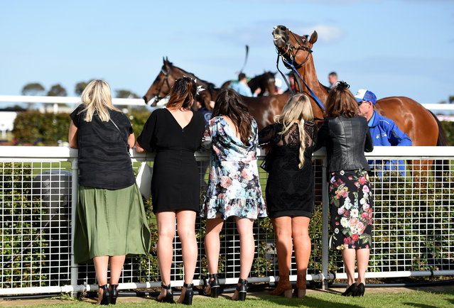 Race goers watch the last race after the Geelong Cup on Geelong Cup day at Geelong Racecourse in Melbourne, Wednesday, October 19, 2016. (Photo by Tracey Nearmy/AAP Image)