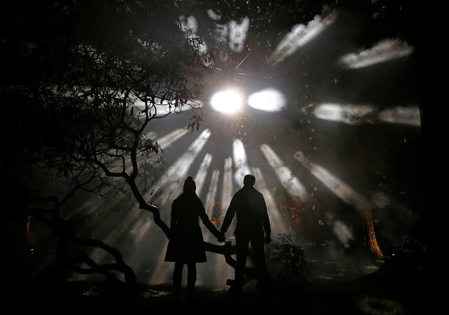 Visitors pose for a photograph during the Enchanted Christmas event at the Forestry Commission's National Arboretum in Westonbirt, Tetbury, western England November 25, 2015. (Photo by Eddie Keogh/Reuters)