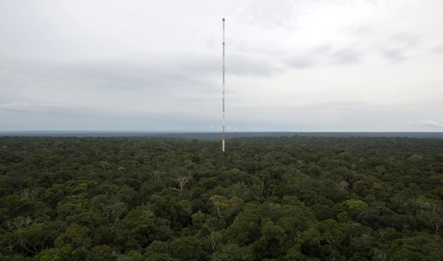 The Amazon Tall Tower Observatory (ATTO) is pictured in Sao Sebastiao do Uatuma in the middle of the Amazon forest in Amazonas state January 9, 2015. (Photo by Bruno Kelly/Reuters)