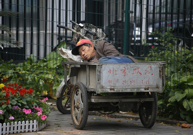 A man takes a nap in the back of his cycle cart at the gate of the Tayuan Diplomatic Office Building in Beijing October 27, 2012. (Photo by Petar Kujundzic/Reuters)