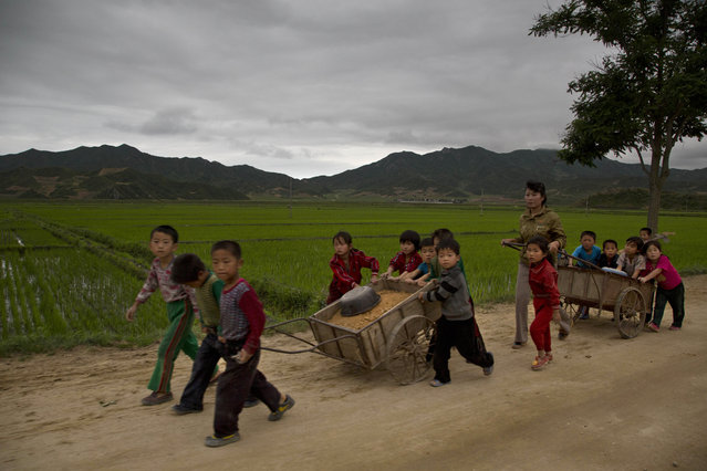 In this June 20, 2014 photo, young North Korean schoolchildren help to fix pot holes in a rural road in North Korea's North Hamgyong province. (Photo by David Guttenfelder/AP Photo)
