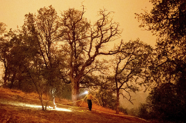 A firefighter lays hose around the Foothills Visitor Center while battling the KNP Complex Fire in Sequoia National Park, Calif., on Tuesday, September 14, 2021. The blaze is burning near the Giant Forest, home to more than 2,000 giant sequoias. (Photo by Noah Berger/AP Photo)