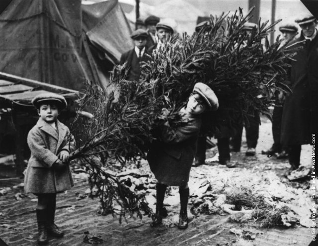 1920: Two little boys dragging home their Christmas tree after choosing it at London's Covent Garden Market