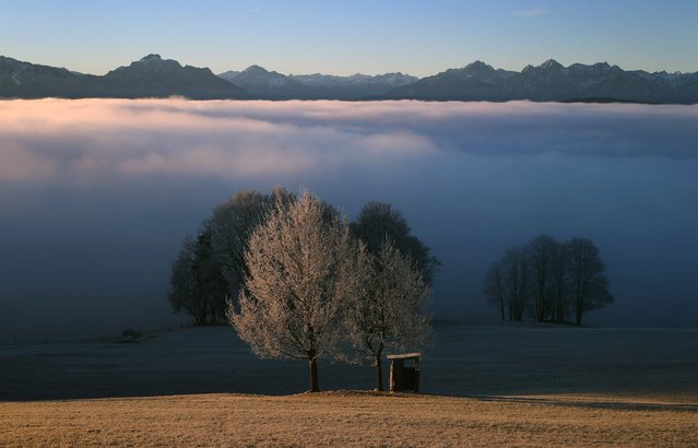 The pre-Alpine region near Bernbeuren, southern Germany, is pictured during the sunrise on December 16, 2016. (Photo by Karl-Josef Hildenbrand/AFP Photo/DPA)