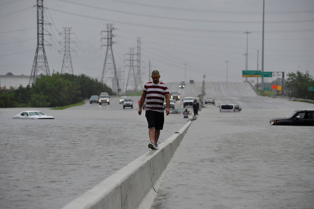 A stranded motorist escapes floodwaters on Interstate 225 after Hurricane Harvey inundated the Texas Gulf coast with rain causing mass flooding, in Houston, Texas, U.S. August 27, 2017. (Photo by Nick Oxford/Reuters)