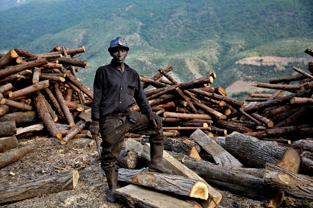 In this Wednesday, May 7, 2014 photo, an Iranian coal miner stops collecting logs to pose for a photograph at a mine  on a mountain in Mazandaran province, near the city of Zirab, 212 kilometers (132 miles) northeast of the capital Tehran, Iran. (Photo by Ebrahim Noroozi/AP Photo)