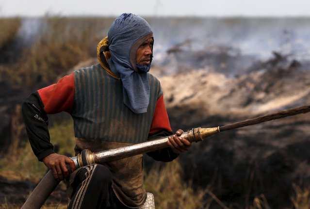 A worker sprays water to extinguish fire at a burning palm oil plantation at the Pulo Geronggang village in Ogan Komering Ilir district in Indonesia's South Sumatra province, September 11, 2015. (Photo by Reuters/Beawiharta)