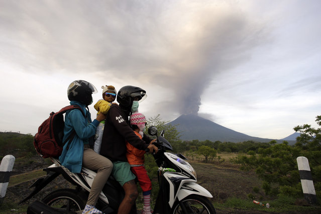 A family on a motorcycle passes by the Mount Agung volcano erupting in the background in Karangasem, Indonesia, Monday, November 27, 2017. Indonesia authorities raised the alert for the rumbling volcano to highest level on Monday and closed the international airport on tourist island of Bali stranding thousands of travelers. (Photo by Firdia Lisnawati/AP Photo)