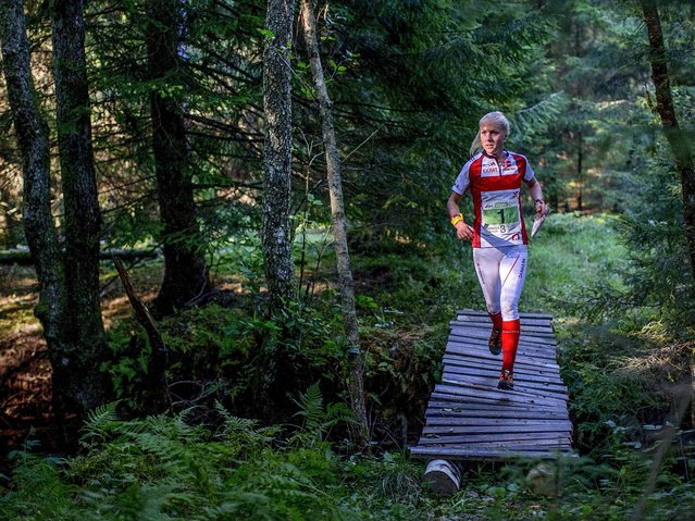 Maja Alm of Denmark in action during the Wonen'srelay competition at the World Orienteering Championships in Tanum, south of Sweden, 27 August 2016. (Photo by Adam Ihse/EPA)