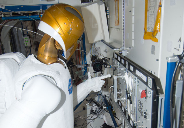 Robonaut 2, in the ISS's Destiny laboratory, during a round of testing for the first humanoid robot in space, on January 2, 2013. Ground teams put Robonaut through its paces as they remotely commanded it to operate valves on a task board. Robonaut is a testbed for exploring new robotic capabilities in space, and its form and dexterity allow it to use the same tools and control panels as its human counterparts do aboard the station. (Photo by NASA/The Atlantic)