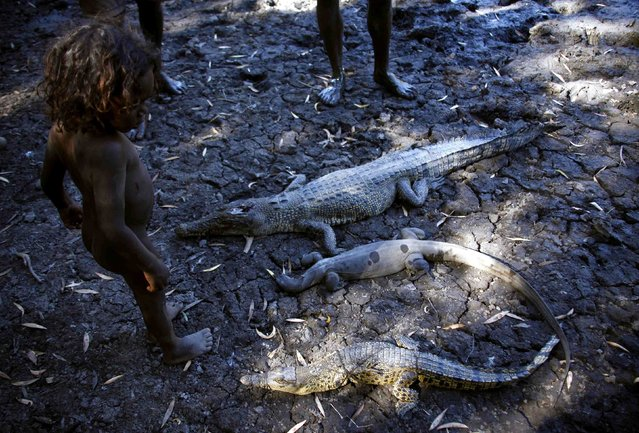 """Johnny, the three-year-old grandson of Australian Aboriginal hunter Roy Gaykamangu, of the Yolngu people looks at the crocodiles and a native Australian lizard called a Goanna that have been killed at a billabong near the """"out station"""" of Yathalamarra, located on the outksirts of the community of Ramingining in East Arnhem Land November 22, 2014. (Photo by David Gray/Reuters)"""