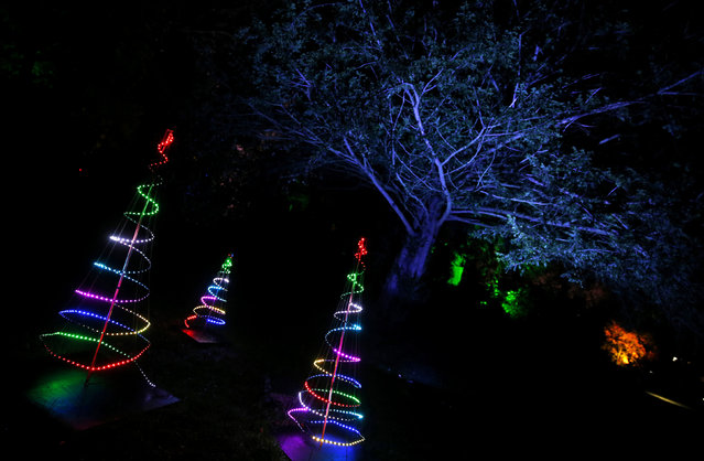 Light sculptures are seen during the Enchanted Christmas event at the Forestry Commission's National Arboretum in Westonbirt, Tetbury, western England November 25, 2015. (Photo by Eddie Keogh/Reuters)