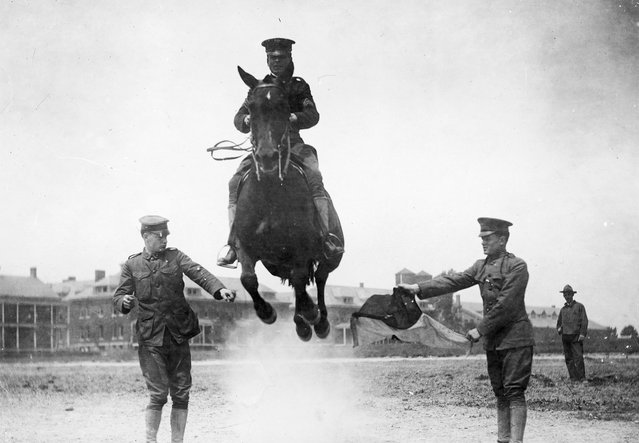 A horse and rider jumping between two soldiers during a horse-jumping competition at Fort Myer, Virginia, 1920. (Photo by Library of Congress)
