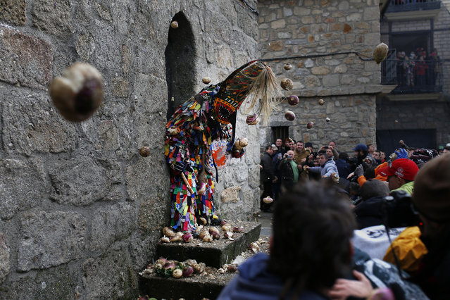 People throw turnips at the Jarramplas as he makes his way through the streets beating his drum during the Jarramplas festival in Piornal, Spain, Wednesday, January 20, 2016. (Photo by Francisco Seco/AP Photo)
