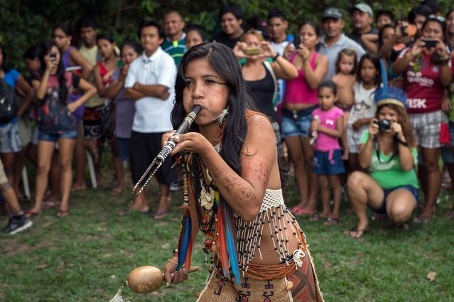 A competitor for the indigenous queen of Peladao performs during the half-time of the final match of Peladao, the amateur football tournament, in Manaus, Amazonas state, Brazil, on November 24, 2013. (Photo by Yasuyoshi Chiba/AFP Photo)