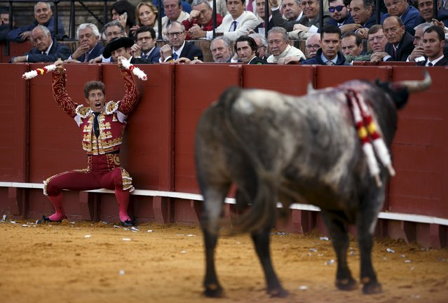 Spanish matador Manuel Escribano shouts to the bull before driving banderillas into it during a bullfight at The Maestranza bullring in the Andalusian capital of Seville, southern Spain April 26, 2015. (Photo by Marcelo del Pozo/Reuters)